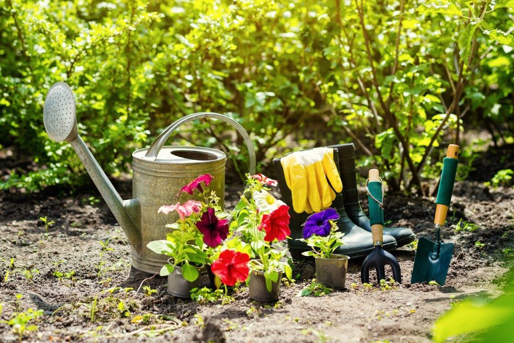 gardening equipment and flowers on smalll pots